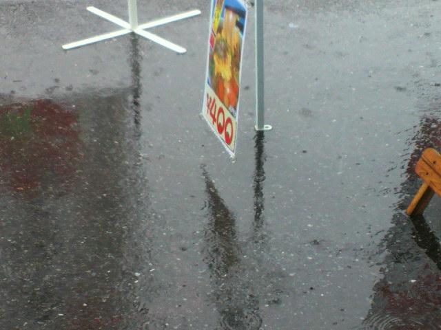雨の1日でした。